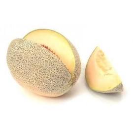 Melon (Dinja)